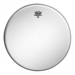 Remo Ambassador Coated 6""